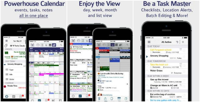 Pocket Informant Calendar & Tasks